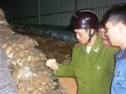 Thị trường - Tiêu dùng - Chống giả mạo khoai tây TQ thành khoai Đà Lạt