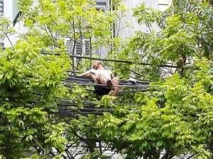 Tin tức Việt Nam - Nam thanh niên cởi trần trèo lên đường dây điện nằm chơi