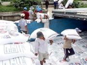 Thị trường - Tiêu dùng - Hậu phá giá đồng NDT: Gạo Việt xuất khẩu bị ép giá