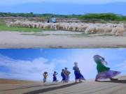 Du lịch - Có một thảo nguyên giữa lòng Ninh Thuận