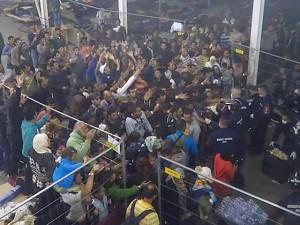 Tin tức trong ngày - Video cảnh sát ném thức ăn cho người di cư gây phẫn nộ