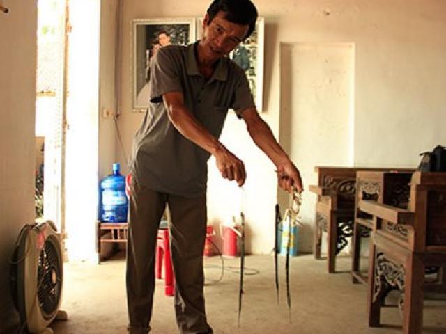 Nghệ An: Người dân bắt được rắn hổ mang chúa dài hơn 3m - 2