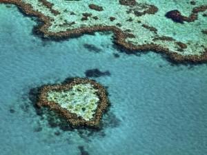 Điểm du lịch - 15 địa điểm đẹp mê hồn của Australia