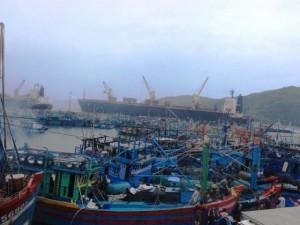 Tin tức trong ngày - Bình Định: Cứu 3 ngư dân rơi xuống biển, lênh đênh nhiều giờ