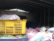 Video An ninh - Bắt cặp vợ chồng vận chuyển 800kg thịt, nội tạng thối