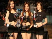 Thể thao - Người đẹp hội tụ tại giải boxing Việt