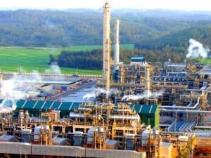 Thị trường - Tiêu dùng - Xăng dầu trong nước giá cao, lo ế
