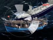 Video An ninh - Bình Định: Xác minh vụ tàu hàng đâm tàu cá rồi bỏ chạy