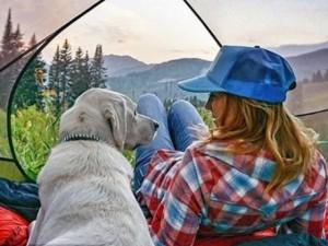 """Bạn trẻ - Cuộc sống - """"Phát sốt'' với trào lưu đi cắm trại cùng cún cưng"""