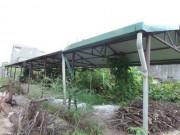 Tài chính - Bất động sản - Những khu chợ chục tỷ đồng xây xong bỏ hoang