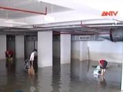 Video An ninh - Hàng trăm xe ngâm nước trong tầng hầm chung cư