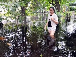 """Tin tức trong ngày - 1 tuần sau mưa, người TPHCM vẫn """"bơi"""" trong nước sâu 1m"""