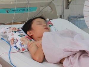 Tin tức trong ngày - Cứu sống hai cháu bé bị ong vò vẽ đốt hơn 100 mũi