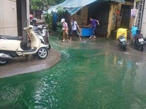 Tin tức trong ngày - Thủ phạm gây nguồn nước xanh kỳ lạ ở Hà Nội