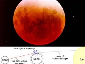 Tin tức trong ngày - Sắp chào đón sự kiện kép siêu trăng và trăng máu