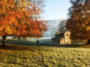 Tin tức trong ngày - Ảnh: Mùa thu nhuộm vàng nước Anh