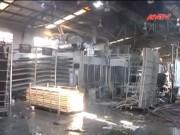 Video An ninh - Cháy lớn tại khu chế xuất, công nhân nhốn nháo tháo chạy