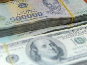 Tài chính - Bất động sản - Lãi suất tiền gửi USD kém VND 5%: Lợi khi gửi tiền đồng