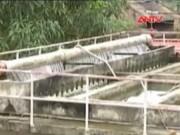 Video An ninh - Hà Nội tăng giá nước sạch từ ngày 1.10