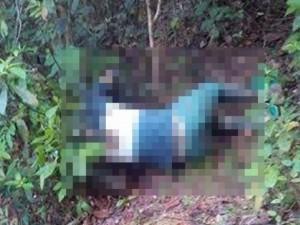 Tin tức trong ngày - Phát hiện thi thể người đàn ông đang phân hủy trên núi