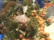 Video An ninh - Thực hư tin đồn ăn vải thiều gây viêm não Nhật Bản