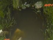 Video An ninh - Phát hiện xác thợ hồ chết bất thường dưới cống