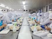 Thị trường - Tiêu dùng - Xin chứng nhận thủy sản khai thác: Vướng quy định mới