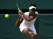 Thể thao - Venus – Kerber: Niềm vui chia đôi (BK Wimbledon)