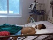 Tin tức trong ngày - Viêm não Nhật Bản vào đỉnh dịch, lây lan cực nhanh