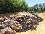 Tin tức trong ngày - Điều tra vụ đổ chất thải Formosa ở trang trại sếp môi trường