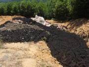 Tin tức trong ngày - Trang trại xin 100 tấn chất thải Formosa để... bón cây?