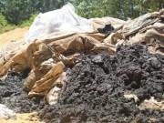 Tin tức trong ngày - Chính phủ yêu cầu kiểm tra việc chôn chất thải của Formosa
