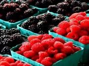 Sức khỏe đời sống - 8 thực phẩm giúp cơ thể giữ đủ nước