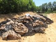 Tin tức trong ngày - Xử lý chất thải của Formosa: Không đơn giản chỉ là chôn lấp