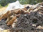 Tin tức trong ngày - Vụ chôn lấp bùn thải: Formosa thừa nhận sai phạm