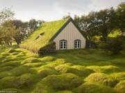 Thế giới - Những ngôi nhà mái cỏ đẹp như tranh vẽ ở Iceland