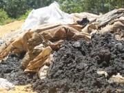 Tin tức trong ngày - Vụ chôn bùn thải: Formosa khẳng định không liên quan