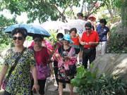 Tin tức trong ngày - Xử phạt nhiều hướng dẫn viên người TQ hoạt động du lịch chui