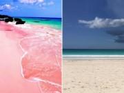 Thế giới - Sự thật về bãi biển cát hồng đẹp như mơ ở Bahamas