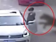 Phi thường - kỳ quặc - Khoảnh khắc hổ vồ người phụ nữ TQ khi vừa ra khỏi xe