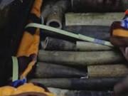 Thị trường - Tiêu dùng - Thủ đoạn ngụy trang kỳ lạ của kẻ buôn lậu ngà voi