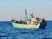 Tin tức trong ngày - Tìm cách giải cứu 8 tàu cá bị nước ngoài bắt giữ
