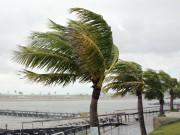 Tin tức trong ngày - Bão số 1 gây mưa to, sóng lớn