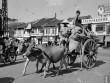 Hội Tam Hoàng: Một thời vùng vẫy trên đất Việt