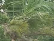 """Video An ninh - Clip: Cơn bão số 1 """"càn quét"""" miền Bắc"""