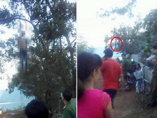 Phát hiện thi thể nam thanh niên treo lơ lửng trên cây