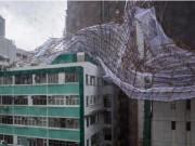 Thế giới - Cây đổ, nhà tốc mái khi bão số 2 càn quét Trung Quốc