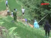 Video An ninh - Giết hàng xóm, phi tang xác vì nghi… trộm trâu