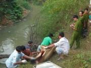 An ninh Xã hội - Kinh hoàng: 1 phụ nữ, 3 trẻ nhỏ bị sát hại ở Lào Cai