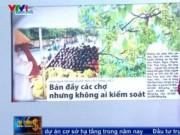 Thị trường - Tiêu dùng - Tràn ngập hoa quả Trung Quốc gắn mác hàng Việt